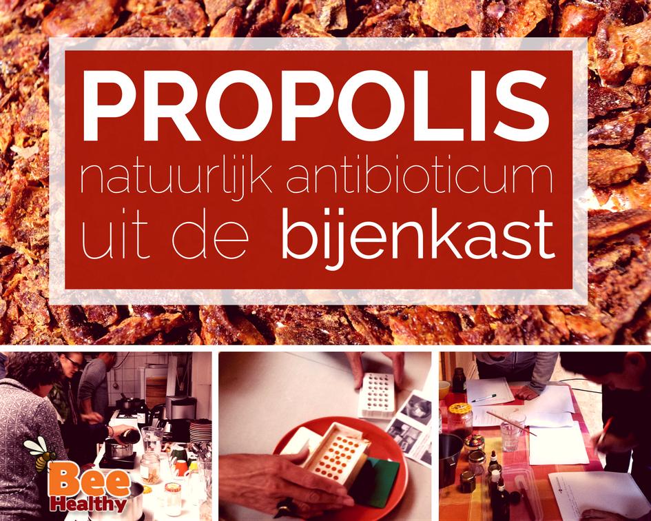 Workshop propolis natuurlijk antibioticum