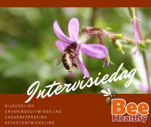 Apitherapie Intervisiedag